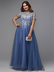cheap -A-Line Plus Size Blue Prom Formal Evening Dress High Neck Short Sleeve Floor Length Lace Tulle with Appliques 2020