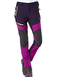 cheap -Women's Hiking Pants Softshell Pants Winter Outdoor Thermal / Warm Waterproof Windproof Breathable Fleece Pants / Trousers Bottoms Camping / Hiking Hunting Climbing Purple Army Green Dark Gray S M L