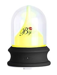 cheap -BRELONG Streamer Bottle Eternal Flower Humidifier Night Light