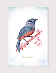 cheap -Print Stretched Canvas Prints - Animals Birds Modern Art Prints