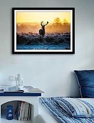 cheap -Framed Canvas Framed Set - Landscape Animals Plastic Photo Wall Art