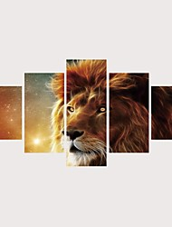 cheap -Print Rolled Canvas Prints Stretched Canvas Prints - Animals Cats Comtemporary Modern Five Panels Art Prints