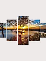 Недорогие -С картинкой Роликовые холсты Отпечатки на холсте - Пейзаж Современный Modern 5 панелей Репродукции