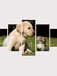 Недорогие -С картинкой Роликовые холсты Отпечатки на холсте - Животные Современный Modern 5 панелей Репродукции