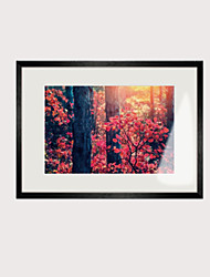cheap -Framed Oil Painting - Travel Wood Oil Painting Wall Art