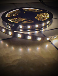 Недорогие -Brelong 5025 голая доска с двойной лампой цветовой температуры с 5м 300led dc12v черный 1 шт
