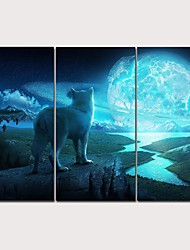 cheap -Print Rolled Canvas Prints Stretched Canvas Prints - Animals Arts, Crafts & Sewing Classic Modern Three Panels Art Prints