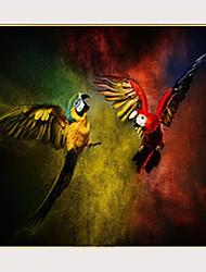 cheap -Print Stretched Canvas Prints - Birds Modern Modern Art Prints