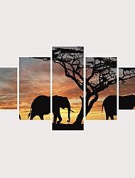Недорогие -С картинкой Роликовые холсты Отпечатки на холсте - Животные Религия Современный Modern 5 панелей Репродукции