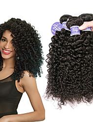 abordables -Lot de 3 Cheveux Péruviens Kinky Curly Cheveux Vierges Naturel Paquets de 100% Remy Hair Weave Casque Tissages de cheveux humains Bundle cheveux 8-28 pouce Naturel Tissages de cheveux humains Sans