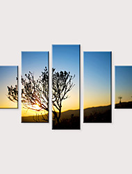 Недорогие -С картинкой Роликовые холсты - Пейзаж Фото Modern 5 панелей Репродукции