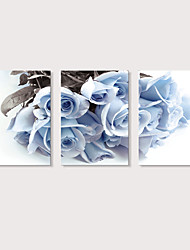 cheap -Print Stretched Canvas Prints - Photographic Floral / Botanical Modern Three Panels Art Prints