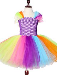 cheap -Bright Rainbow White Ruffles Wedding Girls Dress Unicorn Pattern Girls Tutu Dress