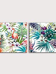 cheap -Print Rolled Canvas Prints Stretched Canvas Prints - Birds Floral / Botanical Modern Art Prints
