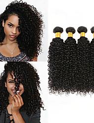 cheap -4 Bundles Peruvian Hair Kinky Curly 100% Remy Hair Weave Bundles 200 g Natural Color Hair Weaves / Hair Bulk Bundle Hair Human Hair Extensions 8-28inch Natural Color Human Hair Weaves Newborn Simple