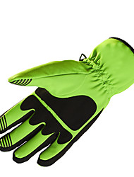 cheap -Ski Gloves Men's Women's Snowsports Full Finger Gloves Winter Silicon Snowsports Winter Sports