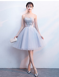 cheap -A-Line Strapless Tulle Bridesmaid Dress with Appliques