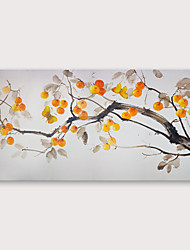 cheap -IARTS®Hand Painted fruit Oil Painting with Stretched Frame For Home Decoration