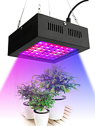 cheap -Grow Light LED Plant Growing Light 80 W 2195-2535 lm 42 LED Beads Growing Light Fixture Red 85-265 V