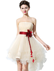 cheap -A-Line Strapless Asymmetrical Tulle Bridesmaid Dress with Sash / Ribbon