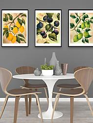cheap -Framed Art Print Framed Set - Still Life Botanical PS Illustration Wall Art