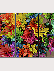 cheap -Print Stretched Canvas Prints - Floral / Botanical Traditional Modern Three Panels Art Prints