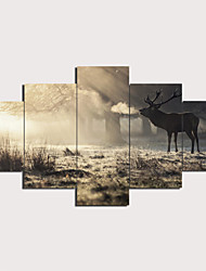 cheap -Print Stretched Canvas Prints - Landscape Animals Modern Traditional Five Panels Art Prints