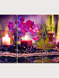 cheap -Print Stretched Canvas Prints - Floral / Botanical Traditional Modern Three Panels Art Prints