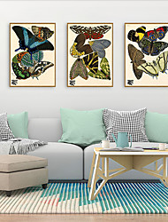 cheap -Framed Art Print Framed Set - Animals PS Illustration Wall Art