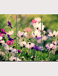 cheap -Print Stretched Canvas Prints - Hearts Floral / Botanical Traditional Modern Three Panels Art Prints