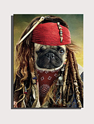 cheap -E-HOME Stretched Canvas Art Cute Animal Series - Pirate Dog Decoration Painting  One Pcs