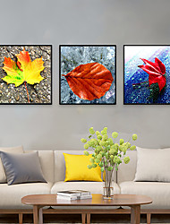cheap -Framed Art Print Framed Set - Botanical PS Photo Wall Art