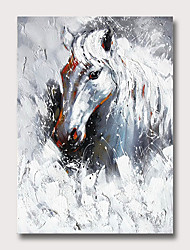 cheap -Oil Painting Hand Painted Abstract Animals Vintage Modern Rolled Canvas Rolled Without Frame