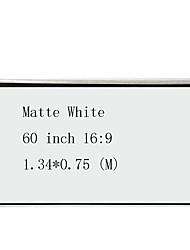 cheap -16:9 60 inch MaxWhite Wall Mount Screen