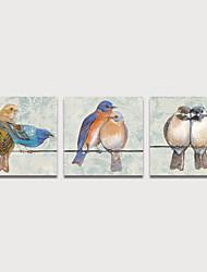 cheap -Print Stretched Canvas Prints - Animals Birds Modern Three Panels Art Prints