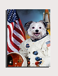 cheap -E-HOME Stretched Canvas Art Cute Animal Series - Aerospace Dog Decoration Painting  One Pcs