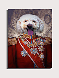 cheap -E-HOME Stretched Canvas Art Cute Animal Series - General Dog Decoration Painting  One Pcs