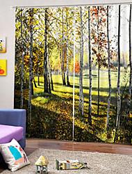 Недорогие -3d печать конфиденциальности две панели занавес для спальни гостиной декоративные водонепроницаемые пылезащитные высококачественные шторы