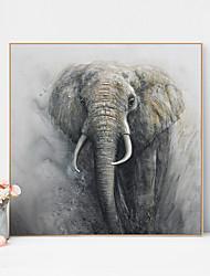 cheap -Framed Art Print Framed Canvas Prints - Animals PS Oil Painting Wall Art