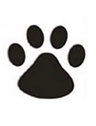cheap -Black Car Stickers Cute Door Stickers / Hood Stickers / Car Tail Stickers Animal Stickers