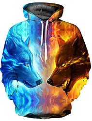 abordables -Pull à Capuche & Sweat-shirt Homme, Bloc de Couleur / 3D / Animal Imprimé Basique / Exagéré Bleu clair