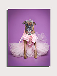 cheap -E-HOME Stretched Canvas Art Cute Animal Series - Pink Skirt Princess Dog  Decoration Painting  One Pcs