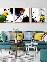 cheap -Framed Art Print Framed Set - Animals PS Illustration Wall Art