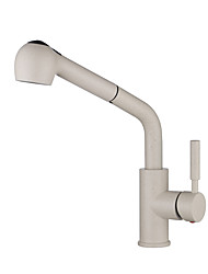 cheap -Kitchen faucet - Single Handle One Hole Painted Finishes Pull-out / Pull-down Centerset Antique Kitchen Taps
