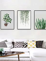 cheap -Framed Art Print Framed Set - Still Life Floral / Botanical PS Illustration Wall Art
