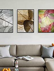 cheap -Framed Art Print Framed Set - Still Life Botanical PS Photo Wall Art