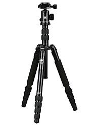 Недорогие -Sirui A1005 SLR камеры штатив Micro-SLR камеры портативный штатив мобильный телефон кронштейн автоспуска