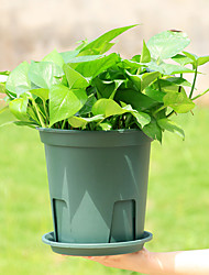 cheap -Practical Plastic Root-control Flowerpot Cuttage Planting Plant Pot for Clematis China Rose Decoration
