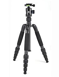 Недорогие -LITBest T-2205SK+K-20X Назначение 160 cm На открытом воздухе Трипод Записывающая камера