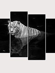 cheap -Print Rolled Canvas Prints - Animals Classic Modern Four Panels Art Prints